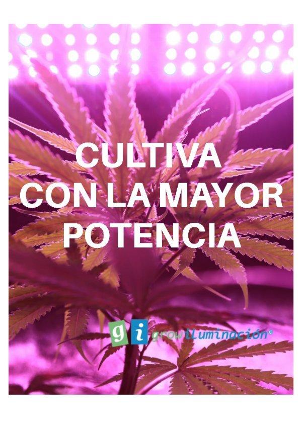 Cultiva-Grow-Shop-Iluminacion